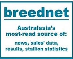 https://www.breednet.com.au/news/13004/-holy-moly---huge-platinum-pay-day